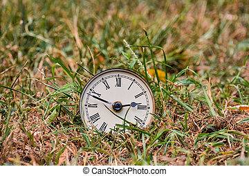 clock on green grass, digital photo picture as a background