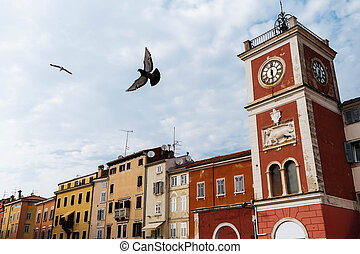 Clock Tower with bird On The Tito Square in the center of the historic European city Rovinj in Croatia.