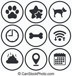 Pets icons. Dog paw and feces signs. - Clock, wifi and stars...