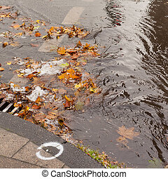 Hail, fall leaves and debris block up sewer hole restricting runoff flow.
