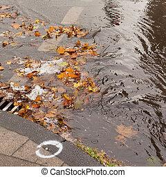 Clogged sewer blocks rainwater runoff - Hail, fall leaves...
