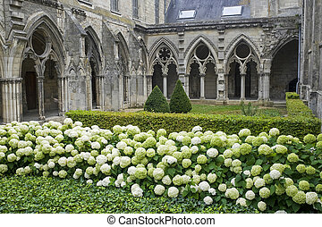 Soissons (Aisne, Picardie, France) - Cloister of ancient abbey in gothic style, plants and flowers (white hydrangeas)