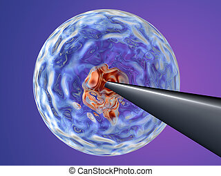 Cloning 2 - A Needle penetrating a stem cell and injecting...