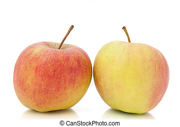 Close and low level angle capturing two fresh apples arranged over white.