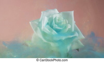 Close look of swirling blue magical dust covering white rose against pink background