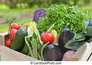 close on fresh and colorful vegetables in a crate outdoor