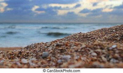 close-up a sea beach