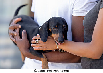 Close up African American couple in love standing with dog