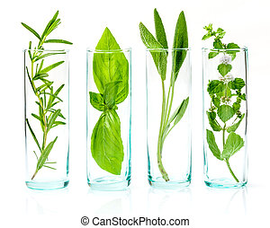 Close Up bottles of essential oils with fresh herbs . Sage, ...