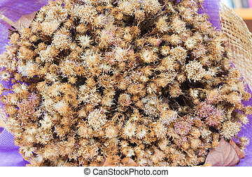 Close-up bouquet of dried flowers