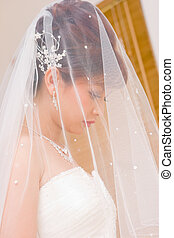 Close up bride to be hidden in veil - close up bride to be...