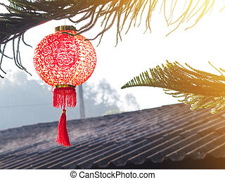 Chinese lantern on pine tree over roof. Chinese New Year background.