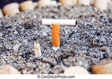 Close-up Cigarette butts on the floor,