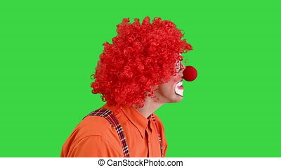 Close up. Clown using imaginary digital or virtual screen on a Green Screen, Chroma Key. Professional shot in 4K resolution. 061. You can use it e.g. in your medical, commercial video, business, presentation, broadcast