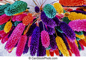 close up colorful dried flowers