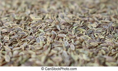 coriander seed background rotating - close up coriander seed...