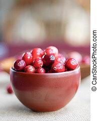 Close up Cranberries