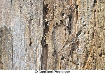 close up dark brown wood texture