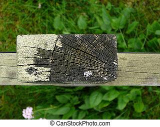 close-up, de, madeira