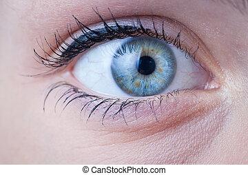 close-up, de, um, bonito, femininas, olho azul