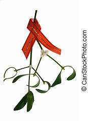 close-up, de, um, grupo, mistletoe