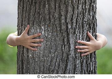 close-up, detalje, isoleret, i tiltagende, stor, stærke, træ trunk, omfavn, fra bagefter, af, lille barn, hands.