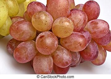 close-up, dois, uvas, sorts