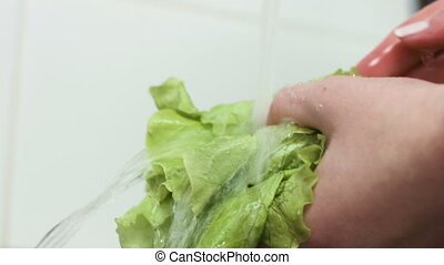 Close-up footage of lettuce leaves are washed in a kitchen sink.
