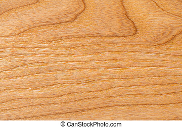 Close-up Frame texture Ash Wood for Background.
