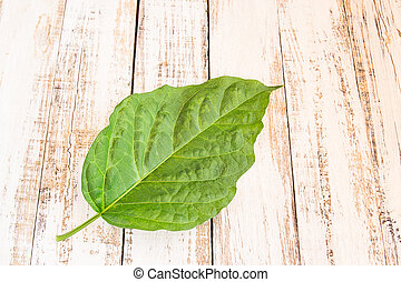 fresh green leaf on wooden background