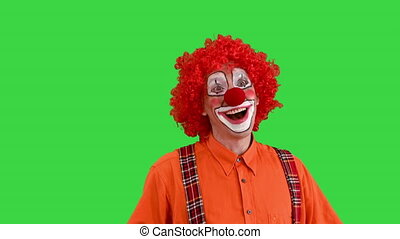 Close up. Front view. Shaking clown in love being shy and sending a kiss to camera on a Green Screen, Chroma Key. Professional shot in 4K resolution. 061. You can use it e.g. in your medical, commercial video, business, presentation, broadcast