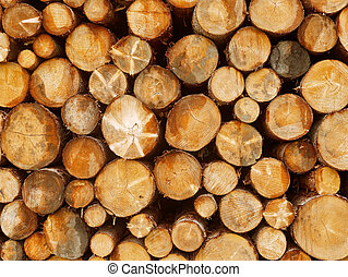 Close up front view stacked tree logs background