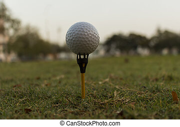 Close up Golf ball on tee