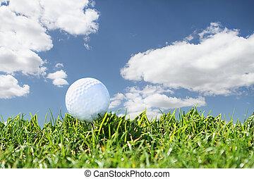 Close up golf course