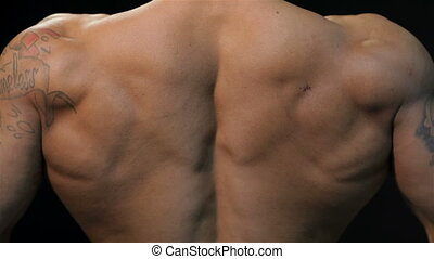 Close up gorgeous muscular back