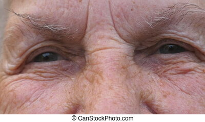 Close up gray eyes of elderly grandmother stares and blinks with happy sight. Portrait of wrinkled female face looks into camera with positive emotions. Facial expression of smiling grandma.