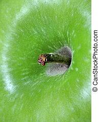 Close up green apple under the light