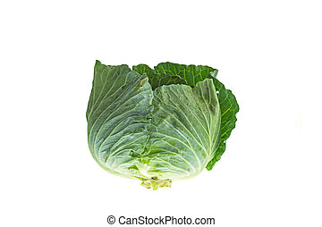 Close up green cabbage isolated on white
