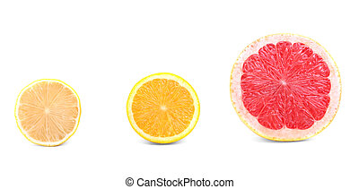 Close-up halves of fresh citruses isolated on a white background. Colorful lemon, orange and grapefruit cut in half. Summer fruit.