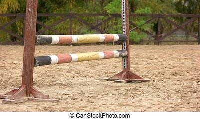 Close up horse jumping over hurdle. Horse jumps over...