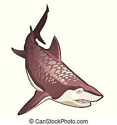 close-up, illustration., grande, tubarão, isolado, tiger, experiência., vetorial, branca, caricatura