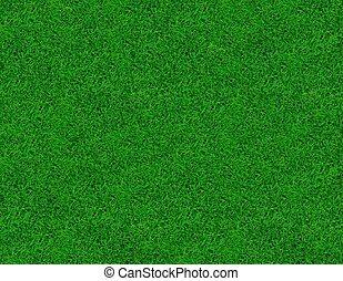 close-up, image, i, frisk, forår, grønnes græs
