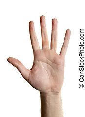 human hand with open palm
