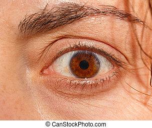 Close up image of female astonish brown eye