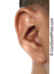 human ear - Close up image of human ear