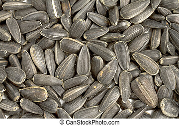 Close up image of sunflower seeds