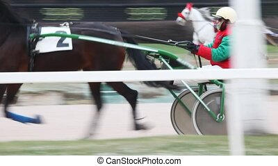 jockey in cart operating race horse and some equestrians...