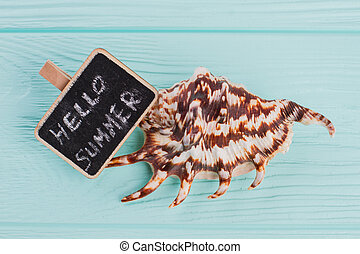 Close-up little seashell with sign Hello sea on blue background.