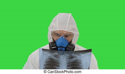 Medic in white hazmat protective suit checking lungs X-ray looking for epidemic virus on a Green Screen, Chroma Key.
