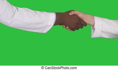 Medical handshake on a Green Screen, Chroma Key.